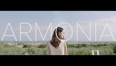 Roma Web Fest - Armonia